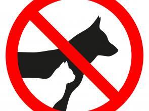 No pets Hotel Les 7 Claus Andorra